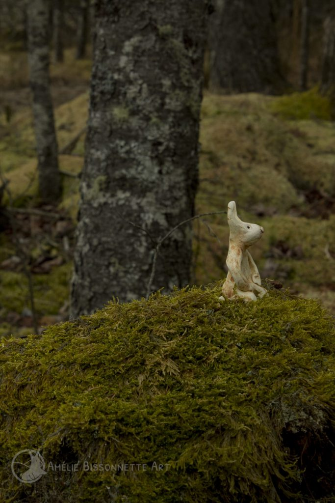 Tiny knealing bunny contemplating mossy forest grounds