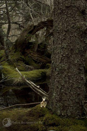 Lapin gardien près d'un arbre en forme d'arche, sur fond de forêt marécageuse