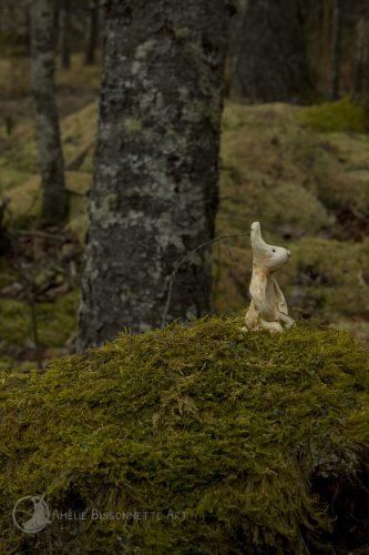 à genou, un lapin-sentinelle contemple le sol forestier couvert de mousse verte