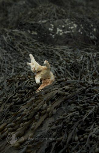 un petit lapin-sirène s'apprête à faire un plongeon de côté dans les algues