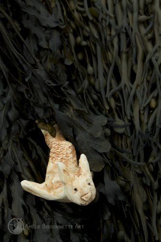 lapin-triton dont la queue est partiellement cachée dans les algues