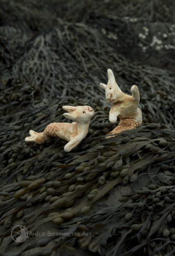 deux lapin-tritons se regardent au milieu d'une étendue d'algues
